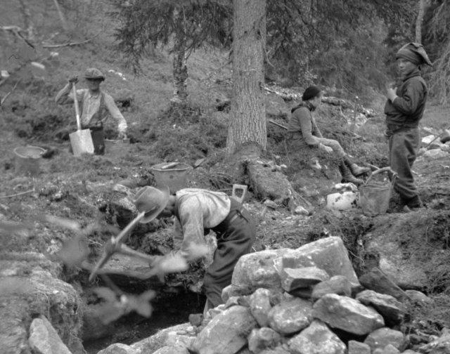 Purnumukan saamelaisia kaivamassa kultaa Tankavaarassa 1934. Kuva Max Peronius/ Antti Peronius