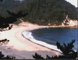 singing beach in Amino Chou.gif
