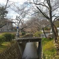 Philosophenweg (哲学の道), Kyoto
