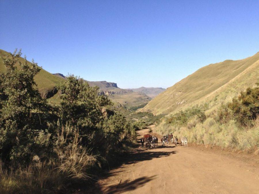 Sani Pass Road. Gegenverkehr.