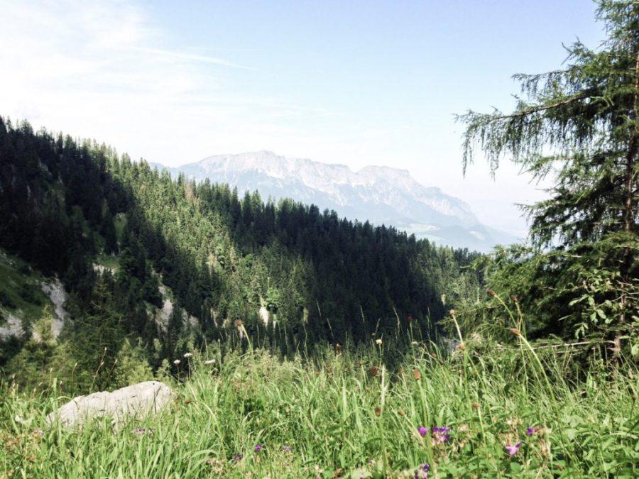 Aufstieg zum Kehlsteinhaus , Obersalzberg (1)
