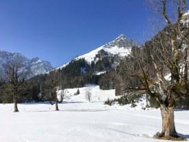 Eng. Karwendel. Tirol.