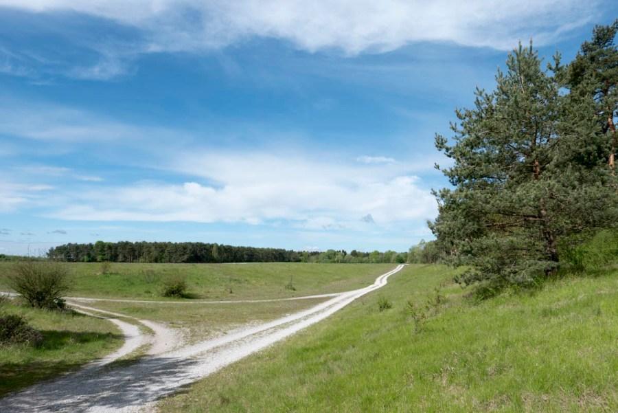 Mallertshofer-Holz-Und-Heide-15