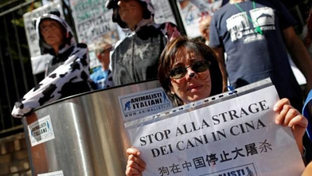Активисты по защите прав животных на Тайване.