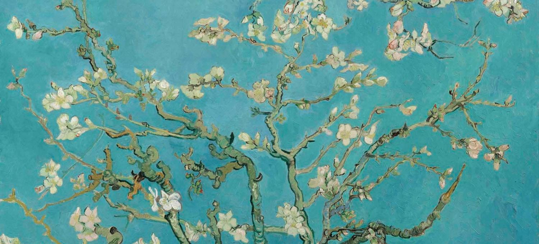 Almond Blossom Vincent van Gogh, February 1890, Van Gogh Museum Amsterdam