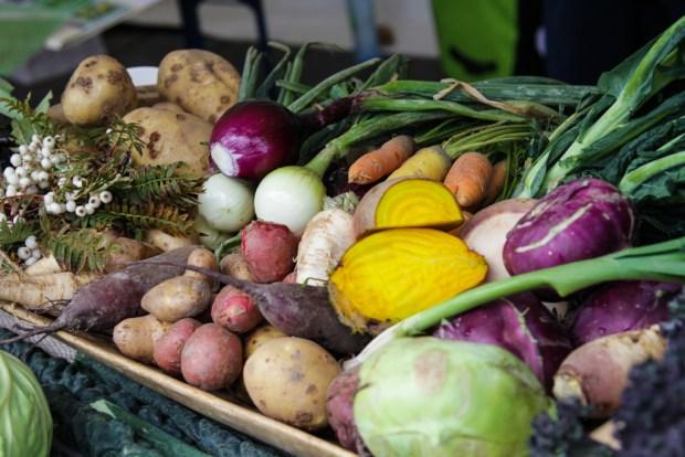 Øko_grønnsaker