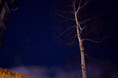 初めてのお出かけ先星空撮影@八ヶ岳