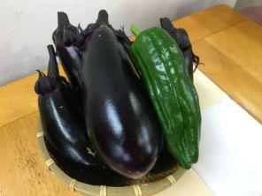 野菜の収穫10