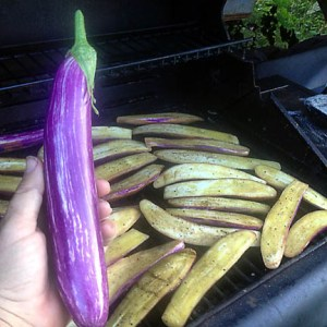 eggplant_lr