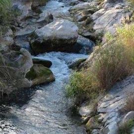 Körperliche Wirkung von Yoga: Wasser