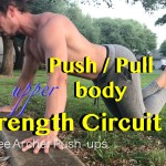 Pull Push Strength Circuit at Bar Park – Bodyweight Mastery Training