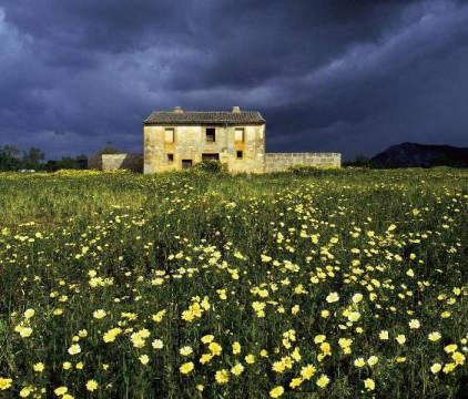 Bowman Europa Spanien Balearen Mallorca Blumenwiese farmhaus Kunstdruck