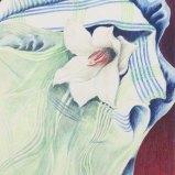 Lilie in Gestreift und Kariert, Farbstift auf Papier 50x60cm