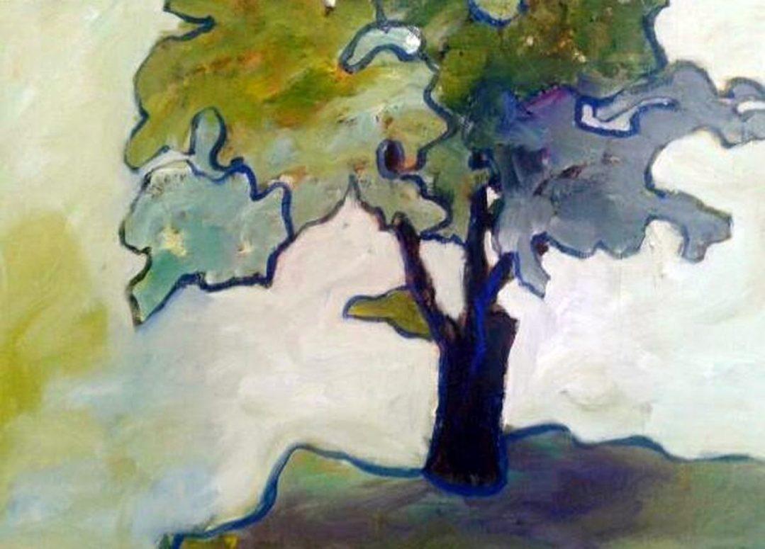 de boom bij de buren