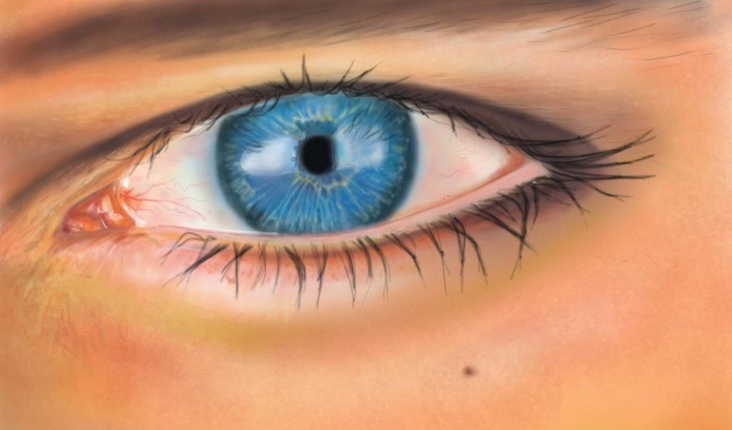 Auge  Digital Augen Studie Figural von lilalu bei KunstNet