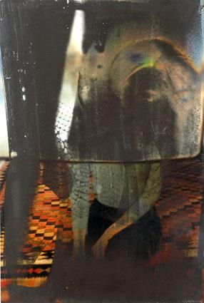 Slange, 2006. Cibachrome og fotoemulsion, 55 x 35 cm.