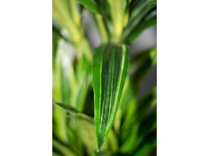HTT Decororation - Dracaena lemon lime 120 cm detail - Kunstplantshop.nl