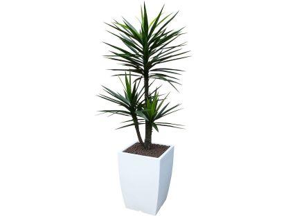 Kunstplant Yucca + pot Genesis43 wit - Kunstplantshop.nl