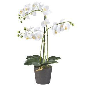 HTT Decorations - Kunstplant Orchidee / Phalaenopsis 3-tak wit H63cm - kunstplantshop.nl