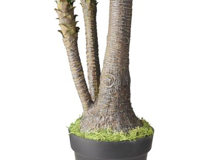 HTT Decorations - Kunstplant Yucca (160x50 cm) - Kunstplantshop.nl