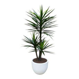 HTT Decorations - Kunstplant Yucca met sierpot Eggy45 wit - Kunstplantshop.nl
