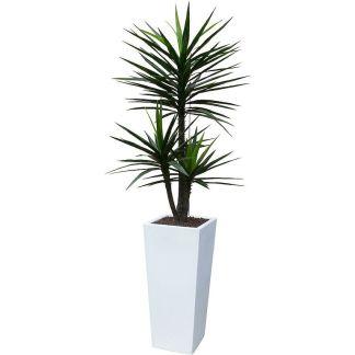 HTT Decorations - Kunstplant Yucca met sierpot Genesis38 wit - Kunstplantshop.nl