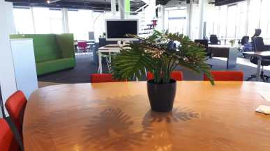 Kunstplanten in showroom - Projectbeplanting - Kunstplantshop.nl