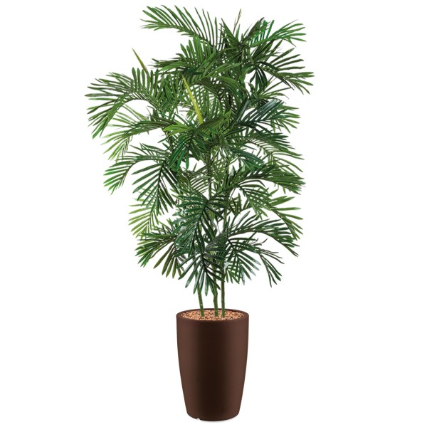 HTT - Kunstplant Areca palm in Genesis rond bruin H210 cm - kunstplantshop.nl
