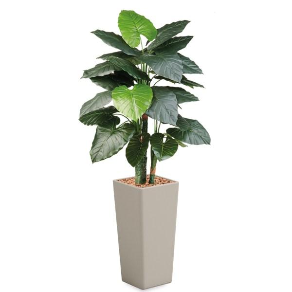 HTT - Kunstplant Philodendron in Clou vierkant taupe H185 cm - kunstplantshop.nl