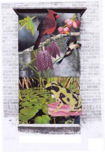 Dierenbloemen-VH---Kikkerbe