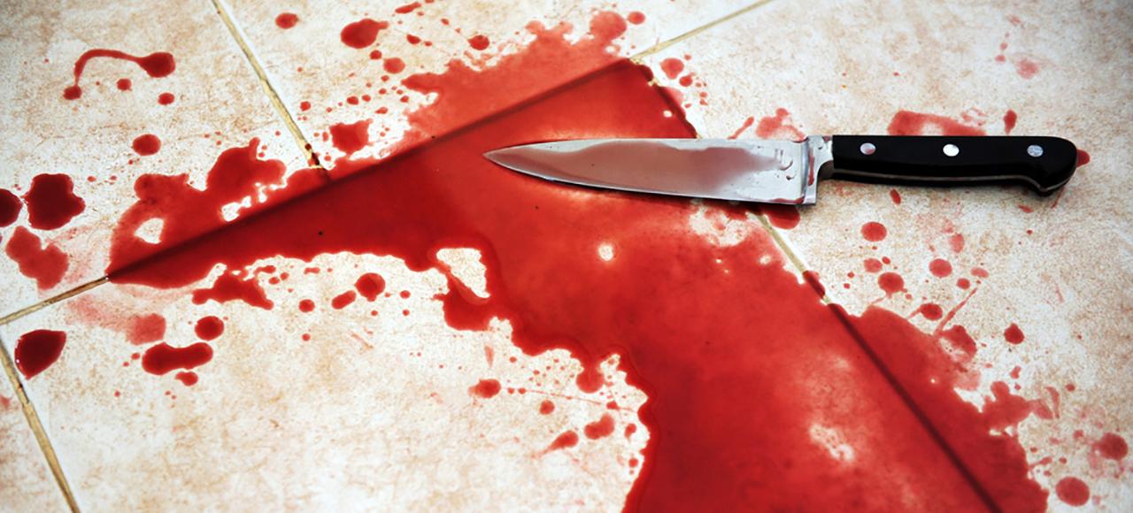 pembunuhan dalam rumah tangga