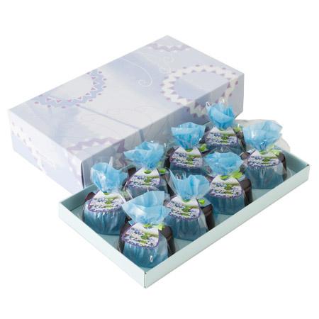 blueberry_8k_450img
