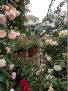"""バラに囲まれながらの""""食事空間""""の創出"""