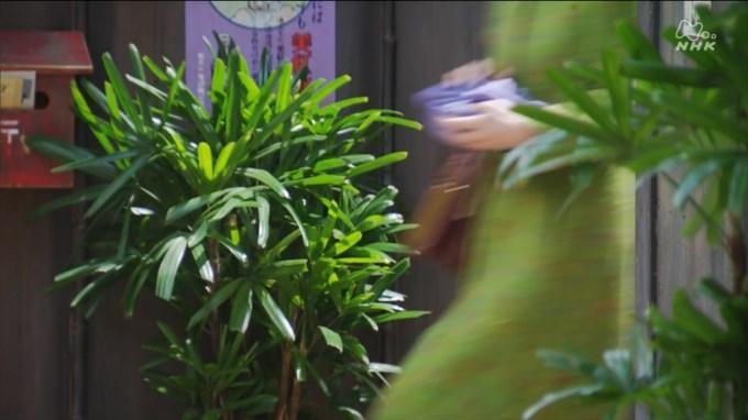 『まんぷく』第96回・美紅水ポスター