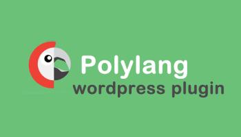 Wordpress Polylang Front Page Error