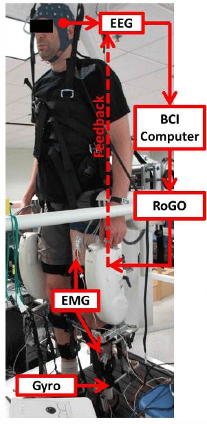 Eeg Circuit Diagram