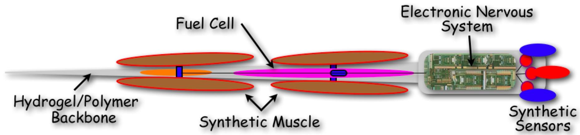 CyberplasmVehicle