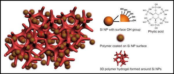 hydrogel_silicon_nanoparticles