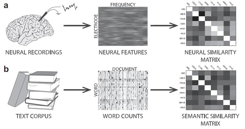 neural_vs_semantic_matrix