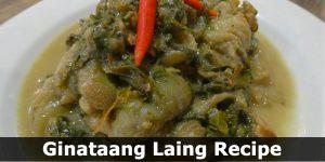 Ginataang Laing Recipe