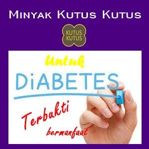 minyak kutus kutus untuk diabetes