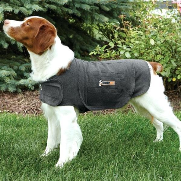 Vihar esetén segíthet a kutyának a Thundershirt-mellény (Fotó: Pinterest)