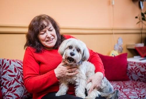 Nesi, a bolognese kutyus szerencsésen visszakerült gazdájához (feol.hu)