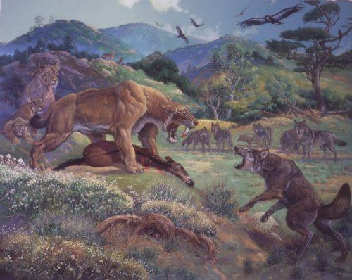 Kardfogú tigrisek és farkasok (Fotó: forwallpaper.com)