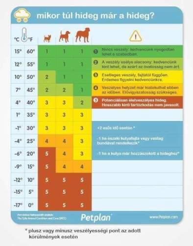 Mikor túl hideg már a hideg kutyáinknak? (Fotó: petplan.com)