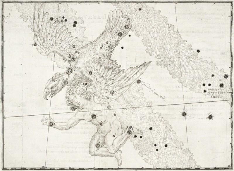 Aquila - uit de Uranometria van Johann Bayer (1603)