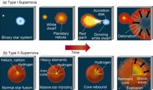 Supernova's van Type I en Type II hebben een verschillende oorsprong. (Nanjing University)