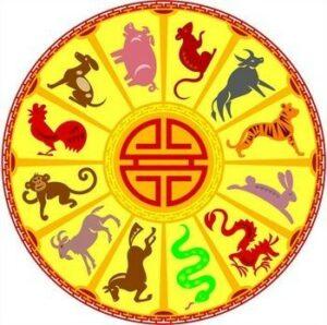 Chinees Horoscoop Wiel