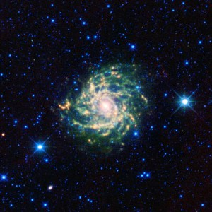 IC 342 in Camelopardalis