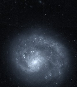 NGC 4625 in Canes Venatici